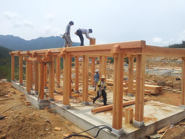 Пост дома строительства и бим инструкция